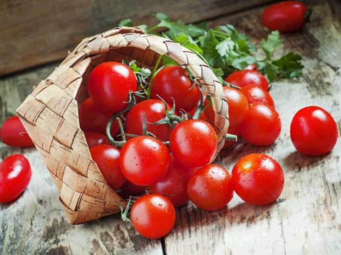 tomatoes improve lung health